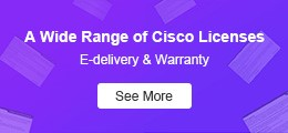 abundant cisco licenses